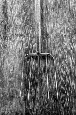 Hay Fork Print by YoPedro
