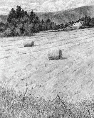 Country And Western Drawing - Hay Harvest by David King