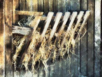 Manger Digital Art - Hay  by Steve Taylor