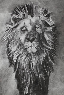 Lion Drawing - He Watchers Over by Angela Bull