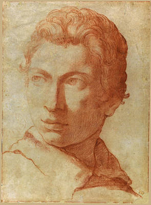 Head Of A Young Man Print by Alessandro Tiarini