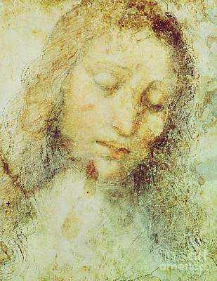 Jesus Art Drawing - Head Of Christ by Leonardo Da Vinci