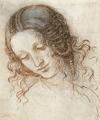 Leda Drawing - Head Of Leda by Leonardo da Vinci