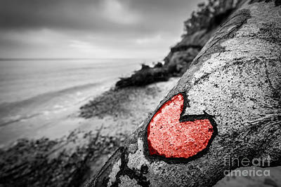 Trees Photograph - Heart Carved Into Fallen Tree Trunk On Wild Beach And Painted Red by Michal Bednarek