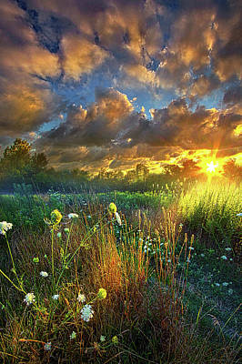 Unity Photograph - Heaven Knows by Phil Koch