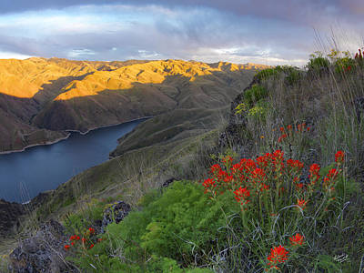Hells Canyon View Print by Leland D Howard