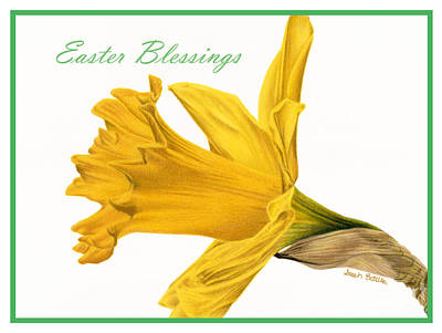 Blessings Drawing - Herald Of Spring- Easter Blessings Card by Sarah Batalka