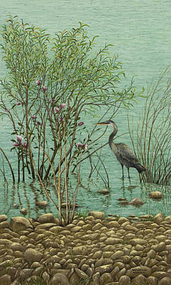 Heron At Crabtree Creek Print by Mary Ann King