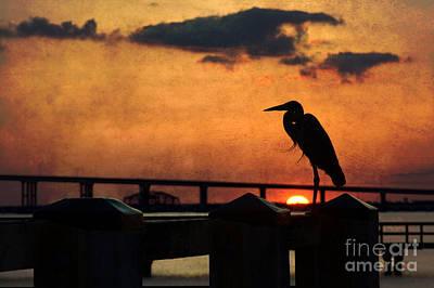 Heron Silhouette Print by Joan McCool