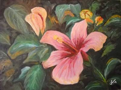 Oil Painting - Hibiscus by James Jopson