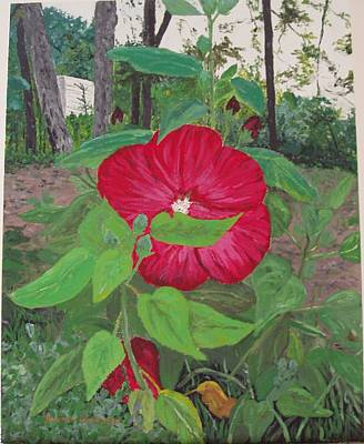 Arkansas Painting - Hibiscus by Sharon  De Vore