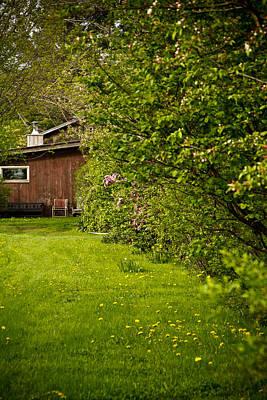 Flower Photograph - Hidden Green by Jeff Porter