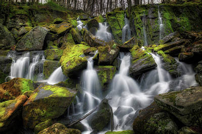 Hidden Mossy Falls Print by Bill Wakeley