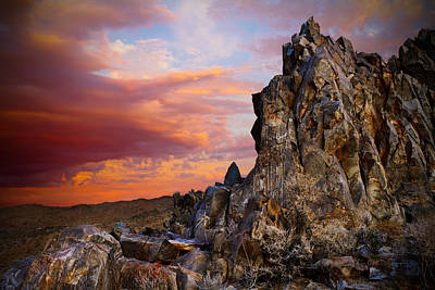 Mike Hill Photograph - High Desert Beauty by Mike Hill
