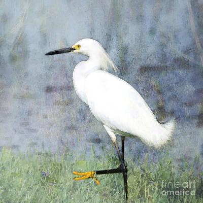 Egret Digital Art - High Stepping by Betty LaRue