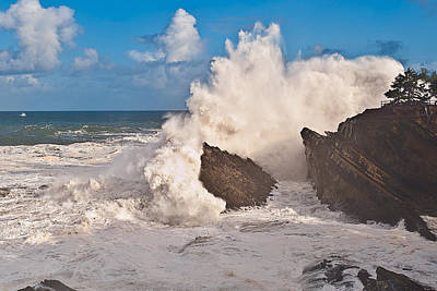 Coo Photograph - High Wave Warning At Shore Acres by Alvin Kroon