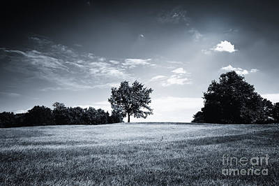 Hilly Black White Landscape Print by Jan Brons