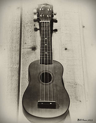 Ukulele Photograph - Hilo Ukulele by Bill Cannon