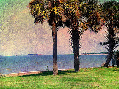 Historic Fort Sumter Charleston Sc Print by Susanne Van Hulst