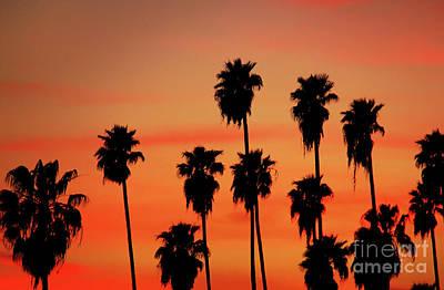 Hollywood Sunset Print by Mariola Bitner