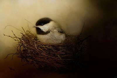 Chickadee Photograph - Home Tweet Home by Jai Johnson