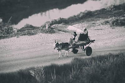 Donkey Photograph - Homewards.. by A Rey