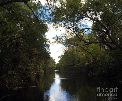 Landscape Photograph - Homosassa River by Julia Stubbe