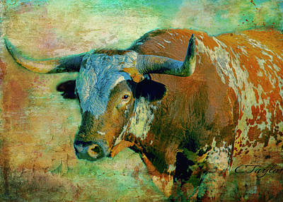 Mascots Mixed Media - Hook 'em 1 by Colleen Taylor