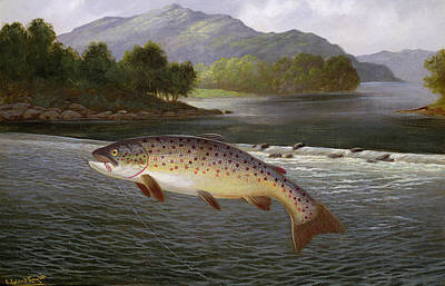 River View Painting - Hooked But Not Landed by A Roland Knight