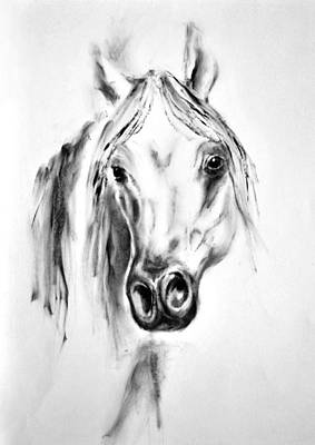 Portrait Painting - Arabian Horse 2 By Diana Van by Diana Van