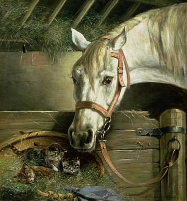 Horse And Kittens Print by Moritz Muller