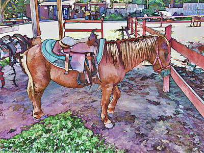 Horse At Zoo Print by Lanjee Chee