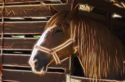Quarter Horse Digital Art - Horse Electric by Chris Flees