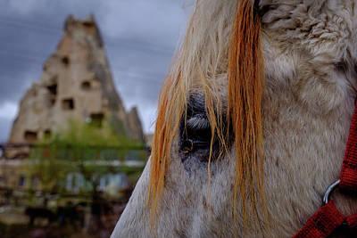Horse Eye -2  Print by Okan YILMAZ