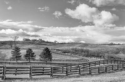 Horse Photograph - Horse Farm 5 Bw by Steve Harrington