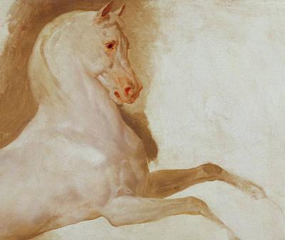 Horse Of Joachim Murat Print by Baron Antoine Jean Gros