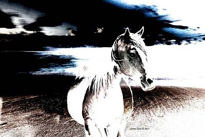 Drawing - Horse On Stormy Beach by Annie Zeno