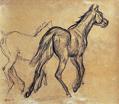 Horses Print by Celestial Images