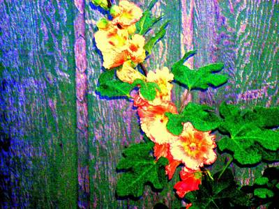 Hot Summer Afternoon Print by  Connie Valasco