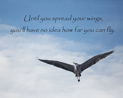 Motivation Photograph - How Far Can You Fly by Bill Wakeley