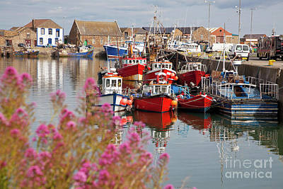 Fishing Boat Photograph - Howth Harbour by Gabriela Insuratelu