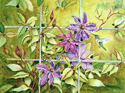 Hummingbird And Clematis Print by Kathryn Duncan