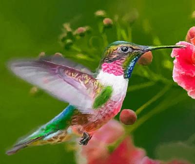 Hummingbird Painting - Hummingbird And Flower Painting by Dr Bob Johnston