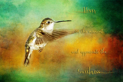 Hummingbird Painting - Hummingbird Hover by Christina VanGinkel