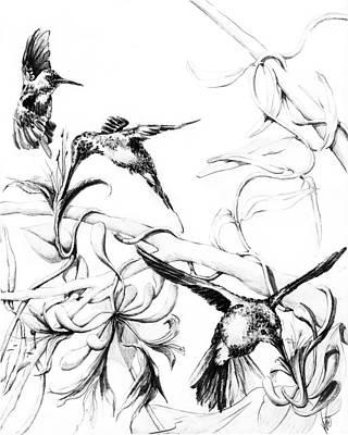Bumblebee Drawing - Hummingbirds Pencil Sketch B0705 by Valerie Woelk