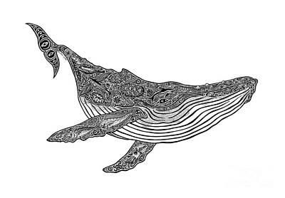 Scuba Diving Drawing - Humpback by Carol Lynne