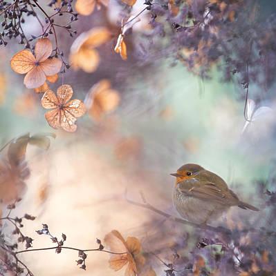Hydrangea Photograph - Hydrangea Fantasy by Teuni