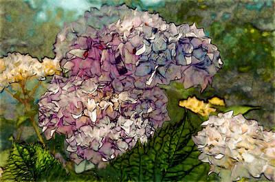 White Photograph - Hydrangeas In Bloom by John K Woodruff