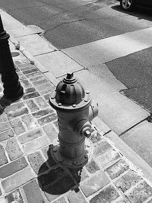 Photograph - Hydrant Ll by Robin Lewis