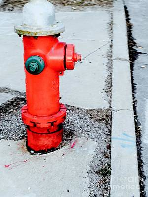Photograph - Hydrant by Robin Lewis